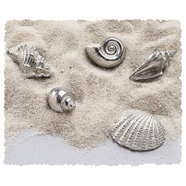 Seashells Pocket Charms Bulk 50 Piece ★