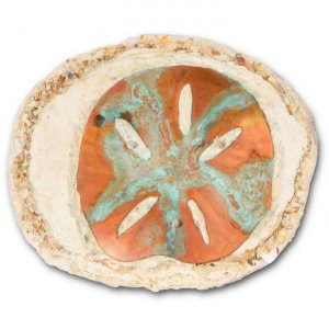 Sand Dollar 3 Wick Rock Oil Candle